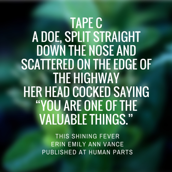 "Tape Ca doe, split straight down the nose and scattered on the edge of the highwayher head cocked saying""you are one of the valuable things."""